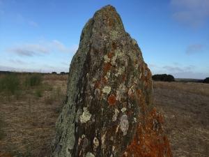 1 Large Rock IMG_1503