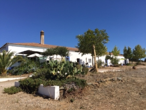 6 Main House IMG_1547