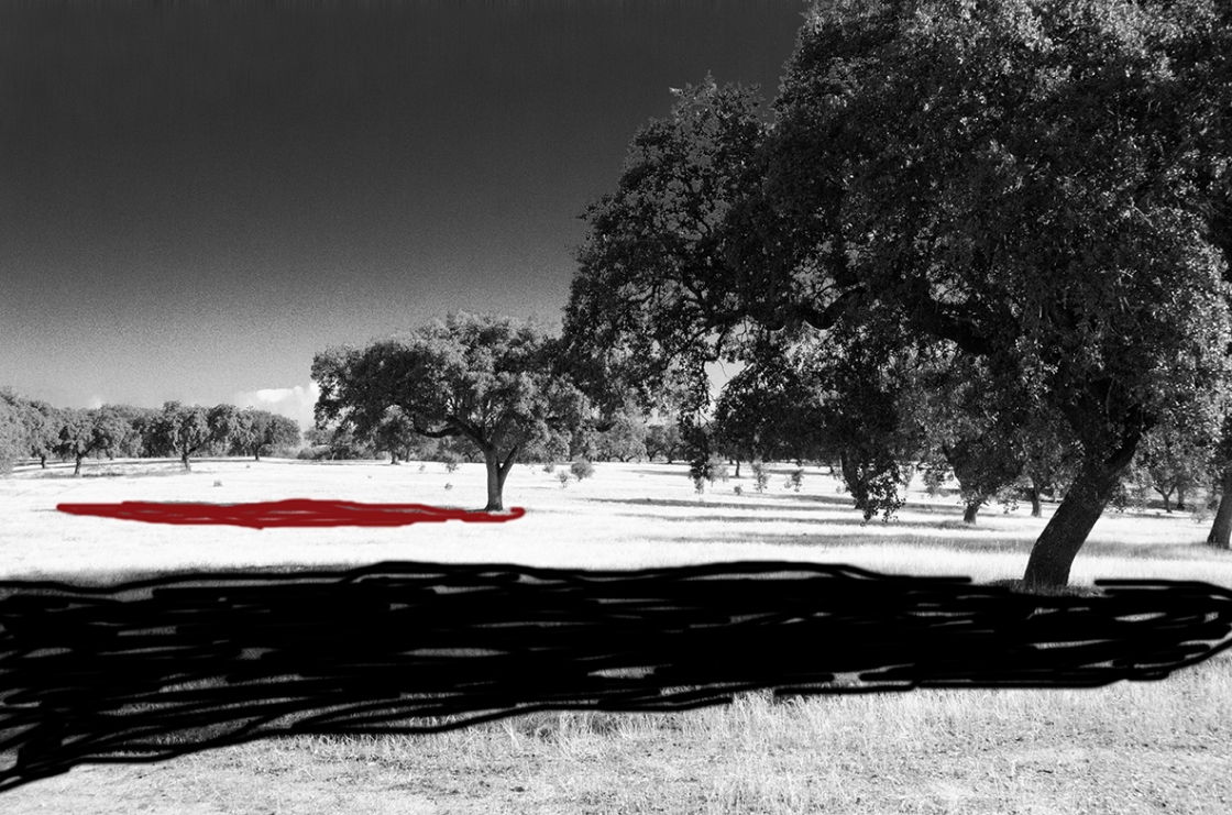 H 72 b and w black and red Portugal landscape-6757