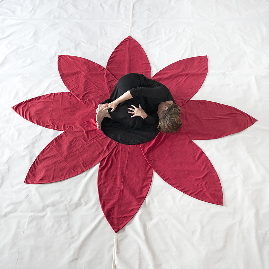 2-flower-flor-_dsc3928-copy