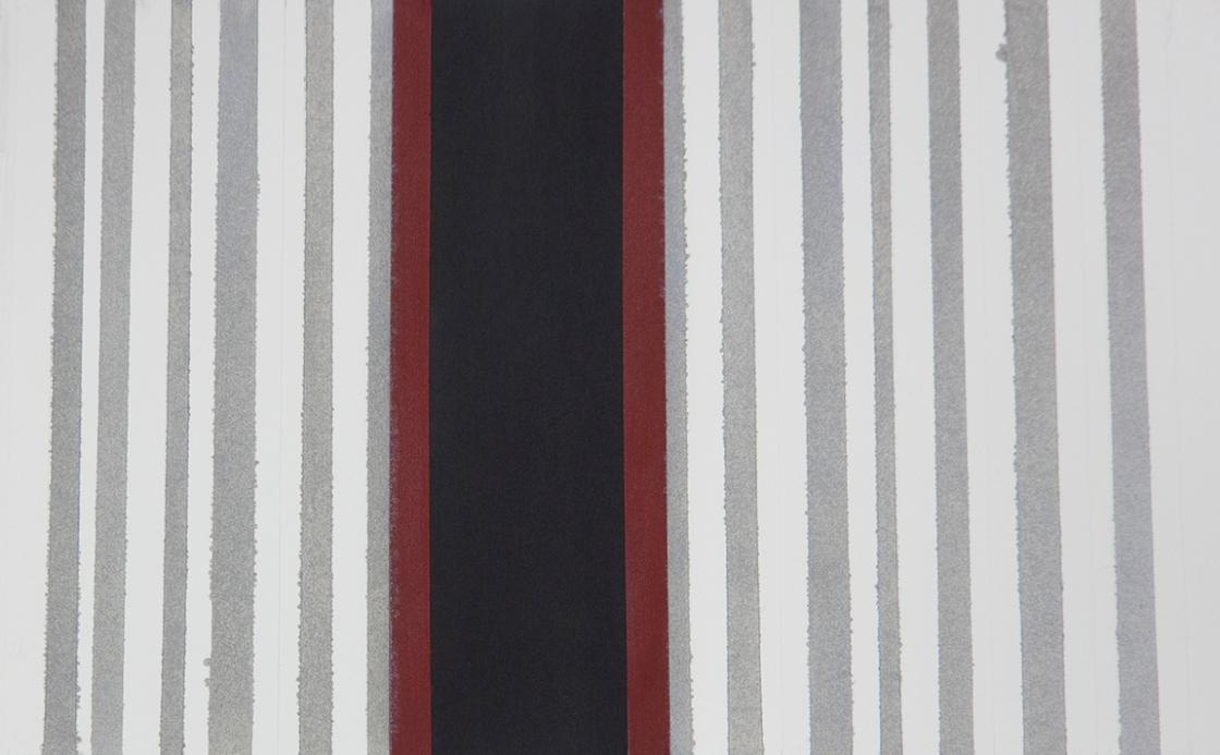 72 Br silver stripes DSC00351